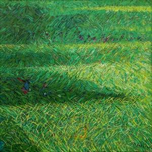 Prato verde mosso dal vento - Olio su tela 80 x 80 - 1999