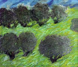 Ulivi mossi dal vento - Olio su tela 60 x 70 - 2001