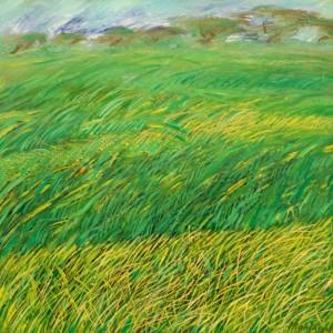 Il vento che muove la pianura verde, olio su tela 70x70, 2000