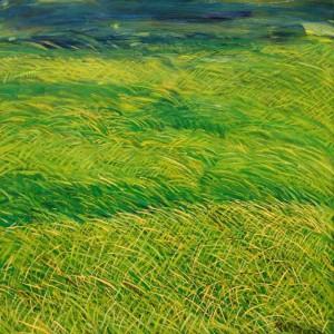 Il vento che muove l'erba sulla collina, olio su tela 70x70, 2000